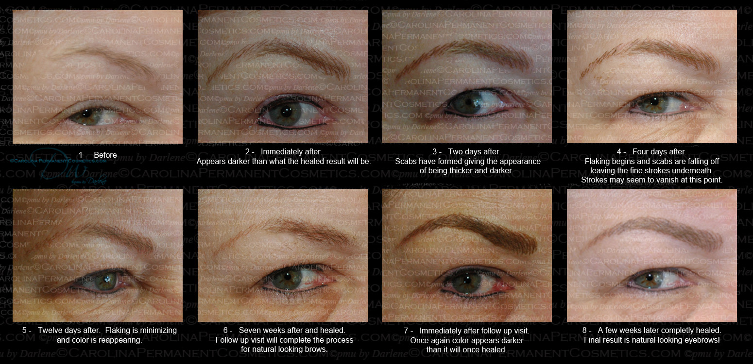 Permanent Eyebrows Appointment Carolina Permanent Cosmetics