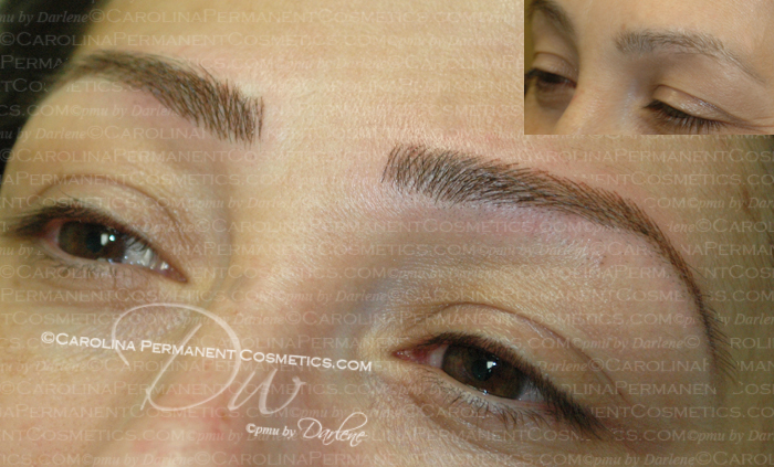 Permanent Eyebrows Carolina Permanent Cosmetics