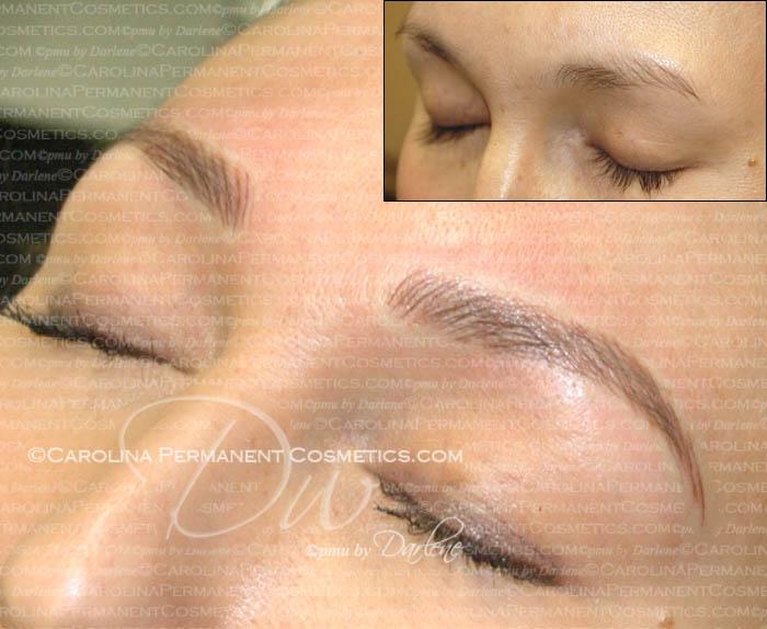 Permanent Eyebrows Carolina Permanent Cosmetics