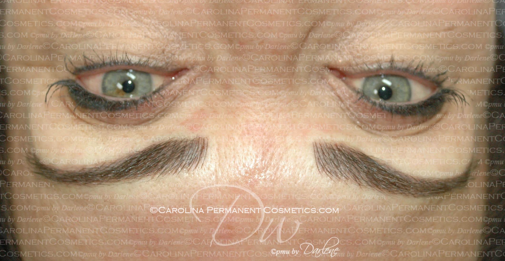 Permanent Eyebrows - Carolina Permanent Cosmetics